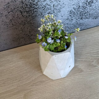 I plevel může osvěžit interiér, co myslíte? 😇  Vázičku nebo taky stojan na tužky máme od @betonite_beton_epoxid 😇  #selfiehome #samisobe #stavbaselfici #jaro #beton #betonite #betonepox #withoutfilter #dekorace #decoration