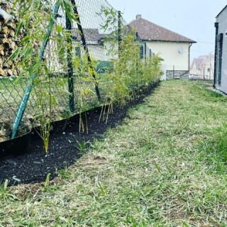I když počasí v poslední době práci venku moc nepřeje, podařilo se nám úspěšně dokončit plot z bambusů kolem jedné strany pozemku 🙌 #samisobe #selfiehome #plot # bambus #snezi #stavbaselfici